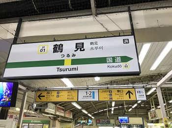 tsuru1-3.jpg