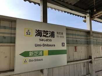 tsuru2-1.jpg