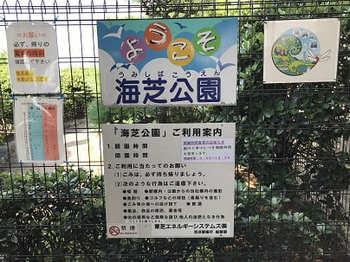 tsuru2-5.jpg