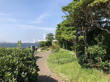 tsuru2-6.jpg